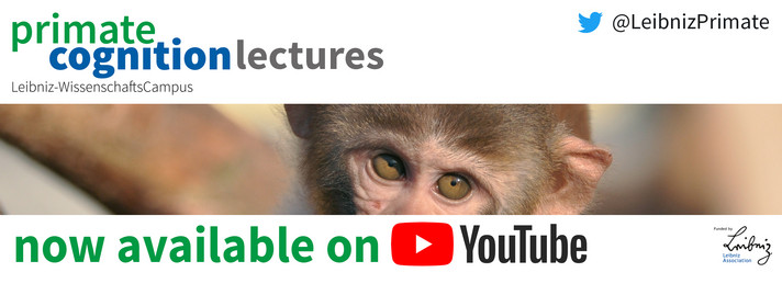 youtube lecture series
